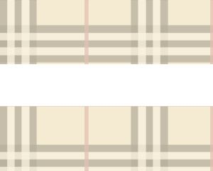Burberry Style PPT