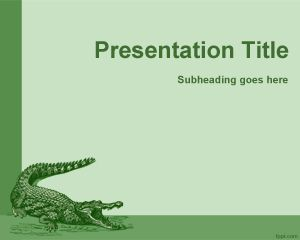 Cocodrile PowerPoint Template