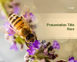 Nectar Bee PowerPoint Template