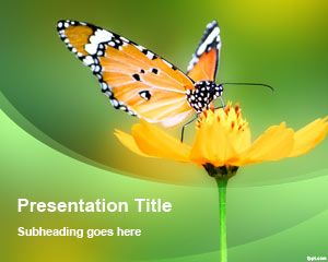 Szablon Flower Butterfly PowerPoint