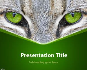 Cat Eyes PowerPoint Template