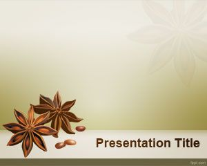Modèle Star Anise PowerPoint