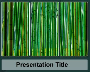 Template Sugar Cane PowerPoint