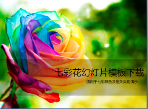 Beautiful colorful roses PPT template download