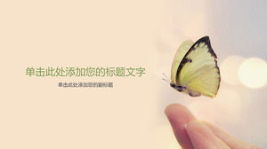Butterfly PPT background picture on fingertips