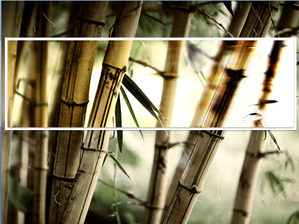 Clear bamboo slips slide template download