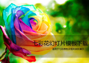 Colorful rose beauty ppt template