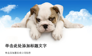 Cute dog background animal PPT template