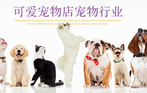 Dog cat lining up background pet PPT template