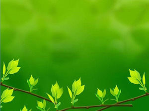 Green Fresh Leaves PowerPoint Background Image Download