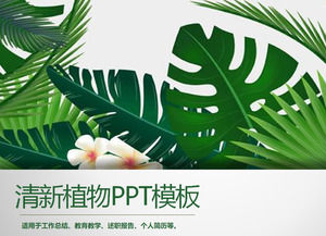 Green Wide Leaf Plant Background PPT Template Free Download