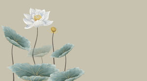 Lotus Like Lotus Theme Minimalist Pure Atmosphere Chinese Style Ppt Template Powerpoint Templates Free Download