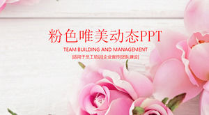 Pink beautiful rose background PPT template, plant PPT template download
