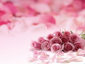 Pink Romantic Rose PPT background image