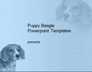 Puppy Beagle Powerpoint Templates