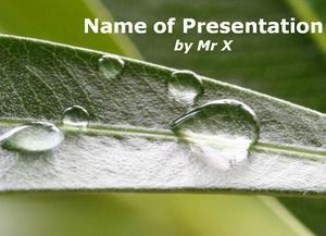 Rain Inspiration Powerpoint
