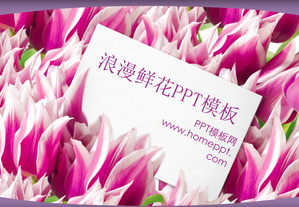 Romantic Tulip Background Love PowerPoint Template