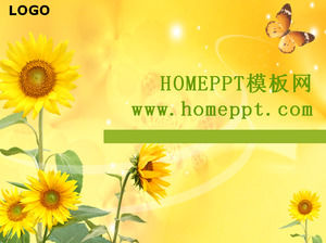 Sunflower butterfly flying PPT template download