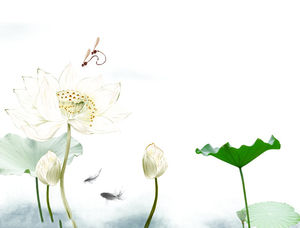 Water Lotus Lotus Chinese Style PPT background picture
